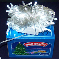seasonal light LED lights 100